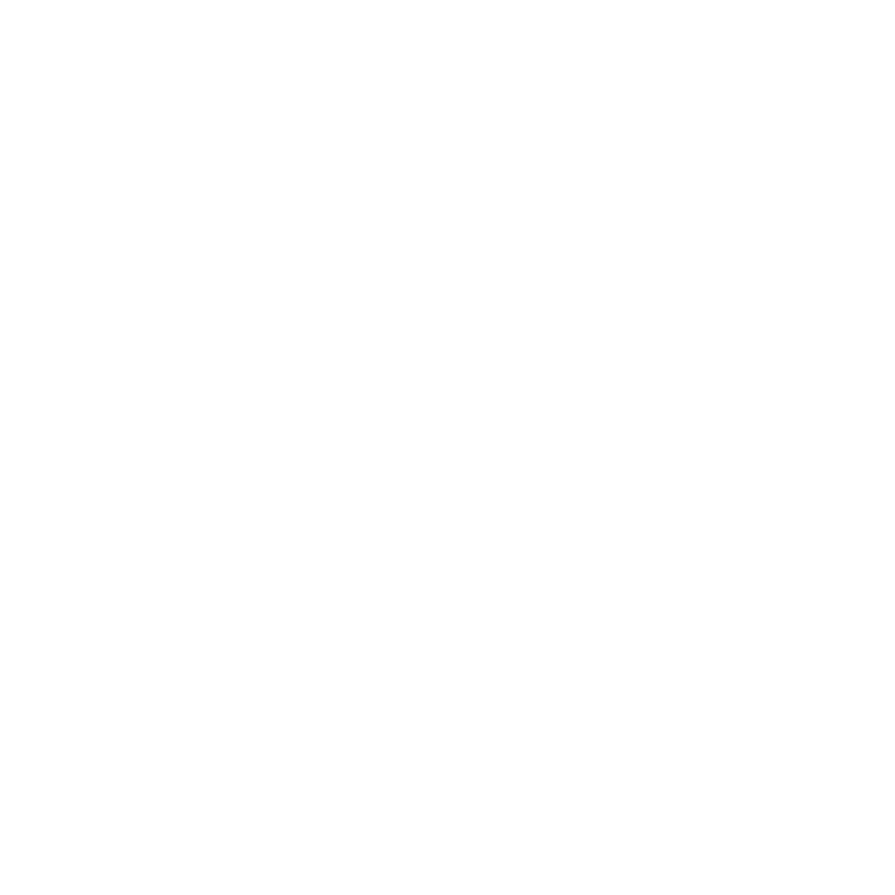 Lagerung Icon Dueve