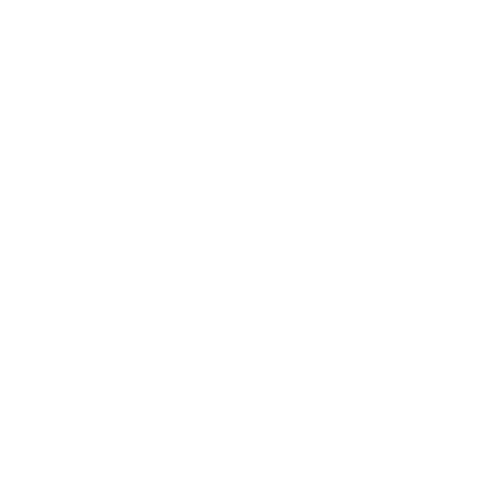 Umzugsservice Icon weiß